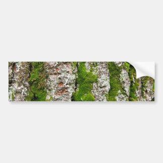 Pine Tree Bark With Moss Bumper Sticker