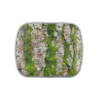 Pine Tree Bark With Moss Candy Tin