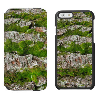 Pine Tree Bark With Moss iPhone 6/6s Wallet Case