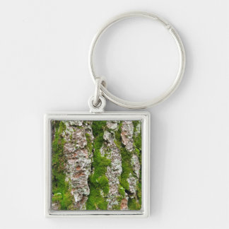 Pine Tree Bark With Moss Keychain