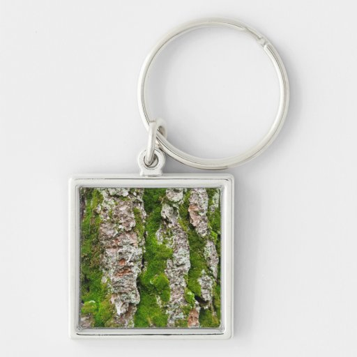 Pine Tree Bark With Moss Silver-Colored Square Keychain