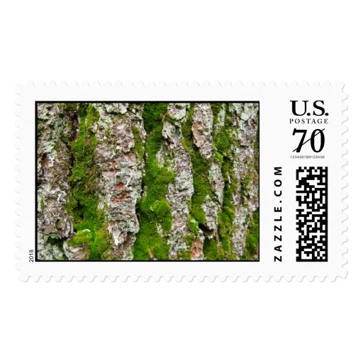 Pine Tree Bark With Moss – Large Postage Stamps