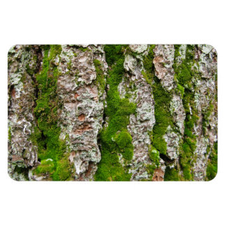 Pine Tree Bark With Moss Magnet