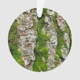 Pine Tree Bark With Moss Ornament