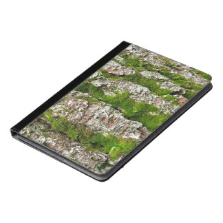 Pine Tree Bark With Moss Photograph iPad Air Case