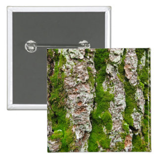 Pine Tree Bark With Moss Pinback Button
