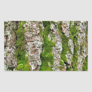 Pine Tree Bark With Moss Rectangular Sticker