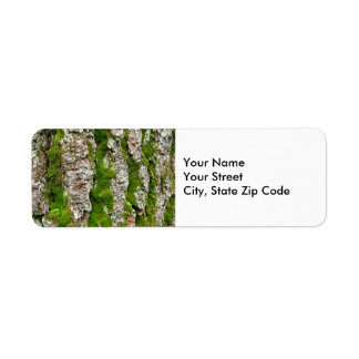 Pine Tree Bark With Moss return address label