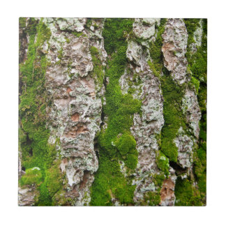 Pine Tree Bark With Moss Tile
