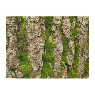 Pine Tree Bark With Moss Wood Wall Art