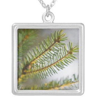 Pine tree branch 2 square pendant necklace