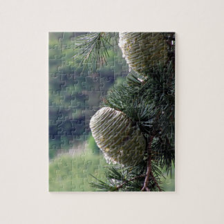 Pine tree branch dripping with resin jigsaw puzzle