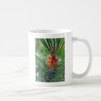 pine tree branch evergreen coffee mug