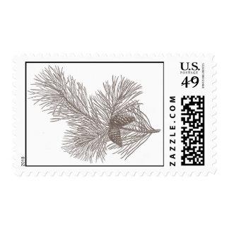 Pine tree branch- horizontal stamp