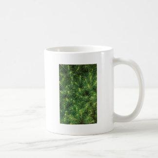 Pine Tree Branches Coffee Mugs