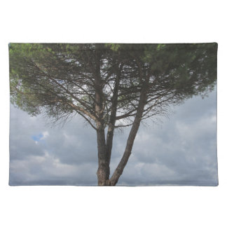 Pine tree cloth placemat