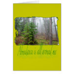 Pine tree forest cards