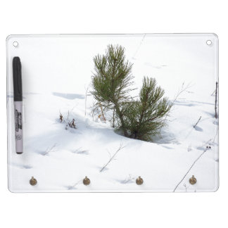 Pine Tree in Snow Dry Erase Board