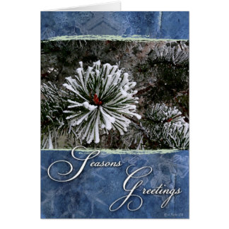 Pine tree in snow-Season's Greetings Greeting Cards