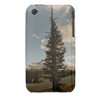 PINE TREE IN YOSEMITE NATIONAL PARK iPhone 3 Case-Mate CASE