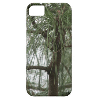 Pine Tree iPhone 5 Case