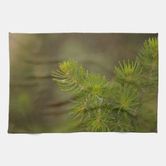 Pine Tree Kitchen Towel