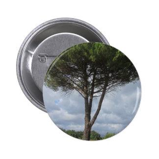 Pine tree pinback button