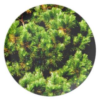 Pine Tree Dinner Plate