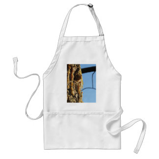 Pine tree resin on the trunk adult apron