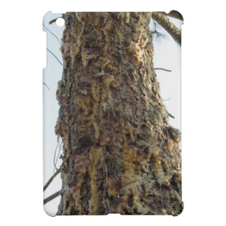 Pine tree resin on the trunk cover for the iPad mini