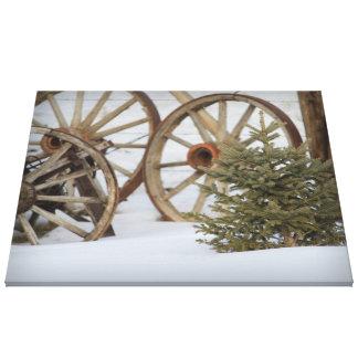Pine Tree Wagon Wheels in Winter Canvas Print
