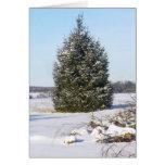 Pine tree with snow greeting card