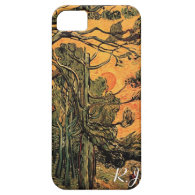Pine Trees against a Red Sky with Setting Sun iPhone 5 Cases