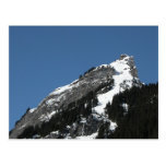 Pine trees and pistes, Isolfluh Postcards