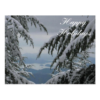 Pine Trees and Snow - Happy Holidays Postcard