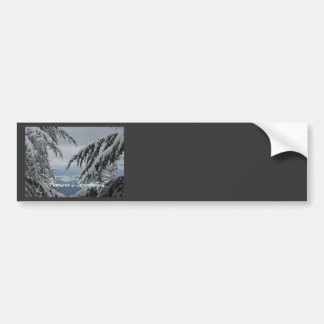 Pine Trees and Snow - Season's Greetings Car Bumper Sticker