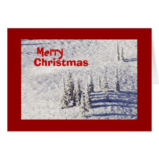 Pine Trees in a Blanket of Snow, Christmas Card