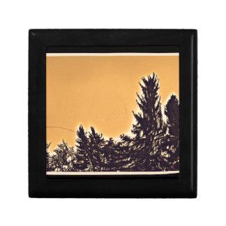 Pine Trees in Denver, CO Gift Box