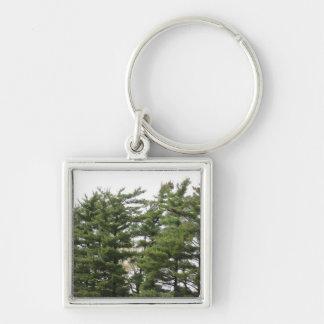 Pine Trees Keychain