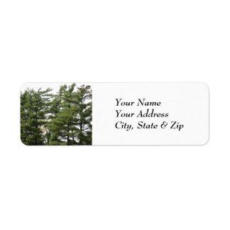 Pine Trees Label