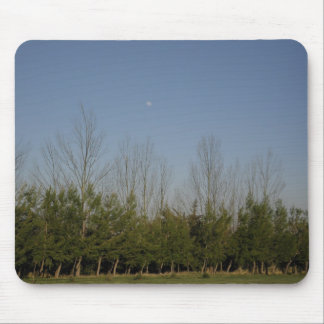 Pine trees mousepad