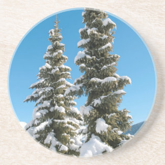 Pine trees under the Snow Sandstone Coaster