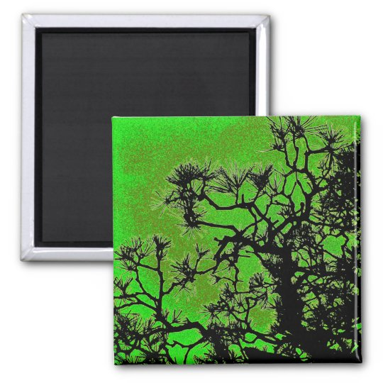 Pine trees , with fresh green tea colors magnet