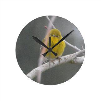 Pine Warbler Bird Nature Peek A Boo Clock