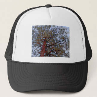 Pine with Red Trunk (detail) Trucker Hat