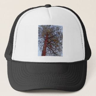 Pine with Red Trunk Trucker Hat
