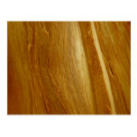 Pine Wood II Abstract Natural Tree Look Design Postcard