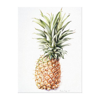 Pineapple 1997 canvas print