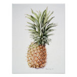 Pineapple 1997 poster