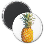 pineapple 2 inch round magnet